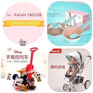 微信爆款儿童玩具、推车等品牌童品招代理!!一级代理拿货价~~