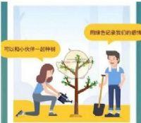 蚂蚁森林合种怎么退出,退出合种树会有什么影响
