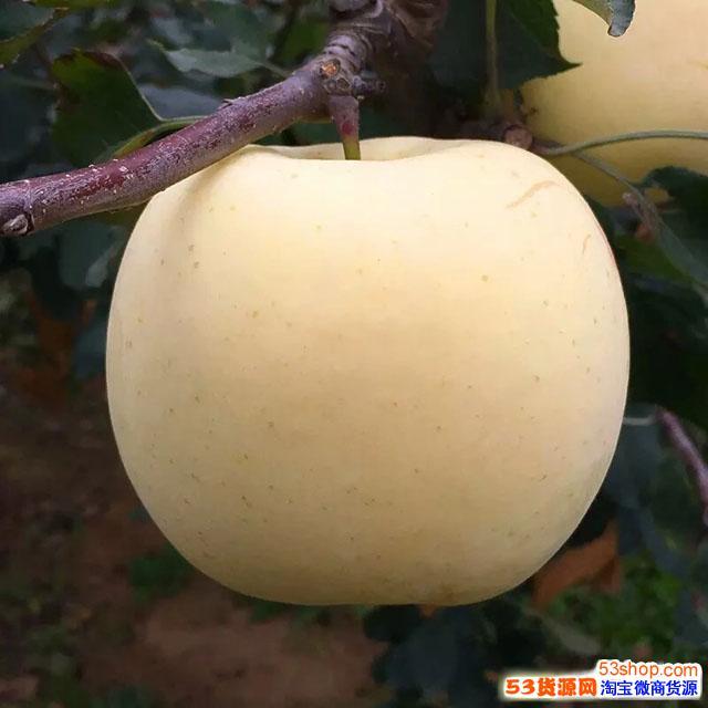 微商货源,水果坚果产地直发招代理 一件代发