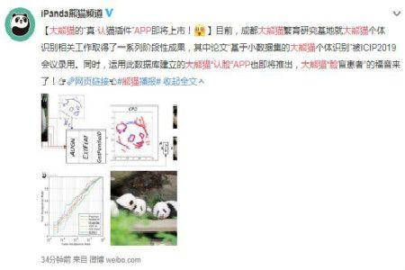 大熊猫认脸APP来了,再也不会看大熊猫都长一样
