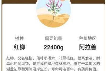 支付宝蚂蚁森林红柳需要22400g能量,种植在阿拉善