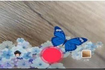 快来看最近很火的抖音点蝴蝶变女装特效视频教程