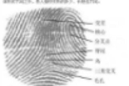 拍照比剪刀手会泄露指纹信息吗 看业内专家的权威解锁