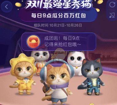 2020淘宝双十一养猫怎么更换衣服