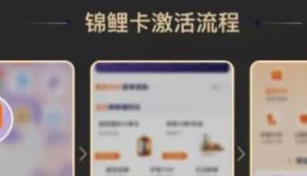 省点花锦鲤卡app激活及使用方法了解下
