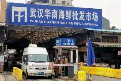 武汉华南海鲜批发市场在哪里