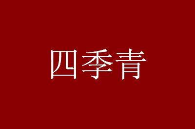 杭州四季青服装批发市场拿货心得四点分享