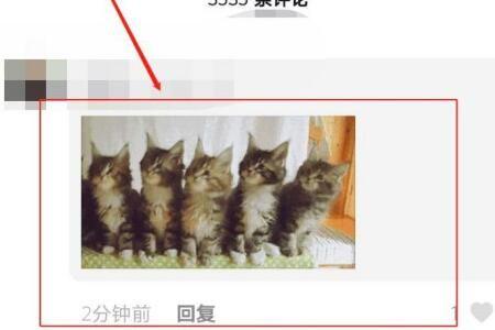 抖音5只猫摇头表情包评论发送操作方法