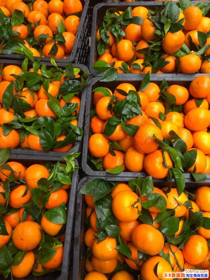 果园直发 基地产地直发 水果微商一手货源 一件代发